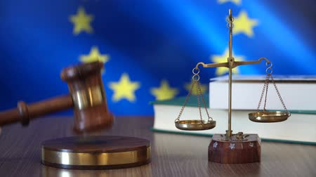 judiciary : Justice for European Union Stock Footage