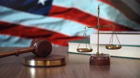 judiciary : Justice for United States Laws in American Court
