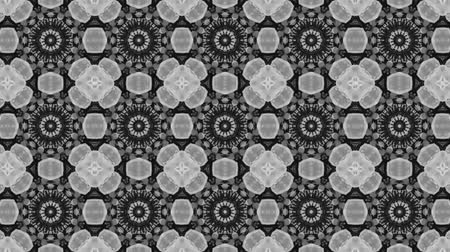 fraktální : poly art kaleidoscope yellow black grey flower for VJ Fractal Background Dostupné videozáznamy