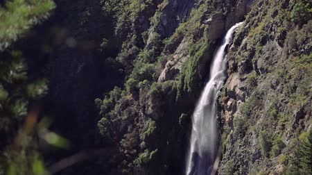 Salto del Agua waterfall in the forest near of Valparaiso, Chile Стоковые видеозаписи