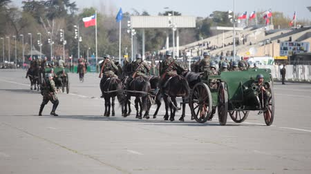 legion : Santiago, Chile - September 15, 2011: Accident with horses pulling an ancient piece of artillery Krupp gun in a rehearsal of the Great Military Parade