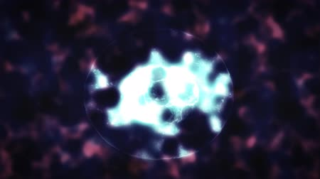 Cell Division Under The Microscope. Blue Color. 2D Animation. Filmati Stock
