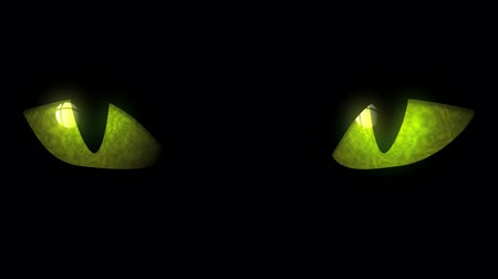 olhos verdes : Cat Eyes Blinking Loop - Animation of cat eyes blinking. Seamless loop.