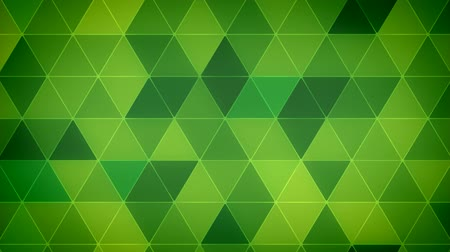 Triangle Polygon Loop 12 Emerald Stock Footage