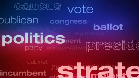 Political and Election Words Loop - Seamless animation loop of various buzzwords pertaining to politics and elections.