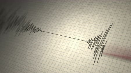 Earthquake Seismograph Loop - Animated seismograph records earthquake tremors. Seamlessly loopable. Stock Footage