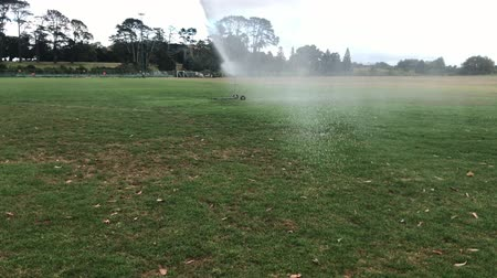 sucho : Sprinkler irrigation facilities in the field. Sprinkler spraying water over green grass with rainbow effect. Irrigation system at park. Slow motion Dostupné videozáznamy