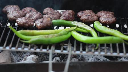 dřevěné uhlí : Meatballs and long green pepper being barbecued at a grill