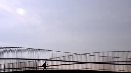 sight seeing : Silhouette of one man passing trough walk over the bridge.