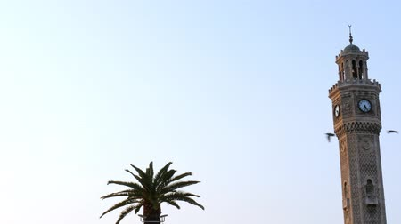 ottomaans : Closeup of izmir clock tower and palm tree with birds flying.