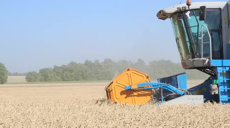 irrigação : Combine Harvester working in the field