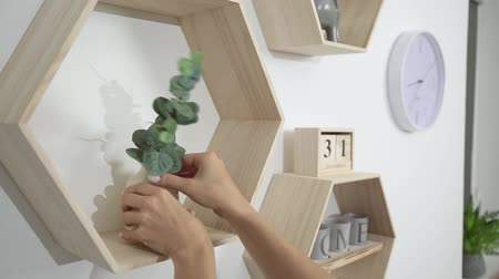 фон : woman puts decor and flowers on the shelves on the wall Стоковые видеозаписи
