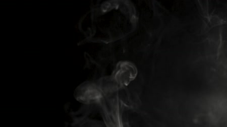 contraste : Trickle of Steam Slowly Rising. White steam rises light on black background. Vídeos