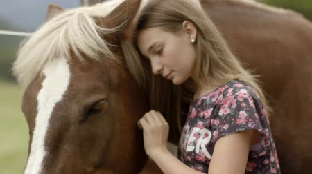 outdoor hobby : Girl petting horse Stock Footage