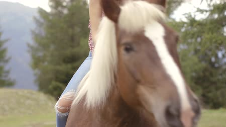 juba : Woman petting horse Stock Footage