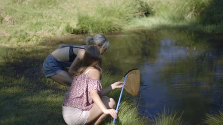 socialising : Friends fishing in river Stock Footage