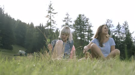 socialising : Friends enjoying countryside Stock Footage