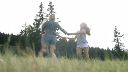 saltando : Friends enjoying countryside Stock Footage