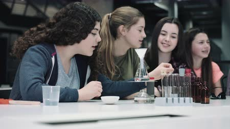 lecture : Group of girls practice chemistry at school