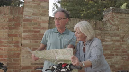 Senior couple looking at map on holiday