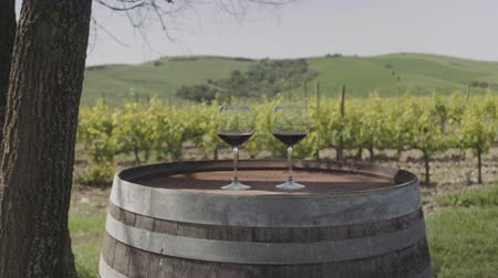 Two Red wine glasses at vineyard in Italy Stok Video