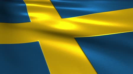 retailer : Charming 3D animation flag of Sweden on silk and shadow Stock Footage