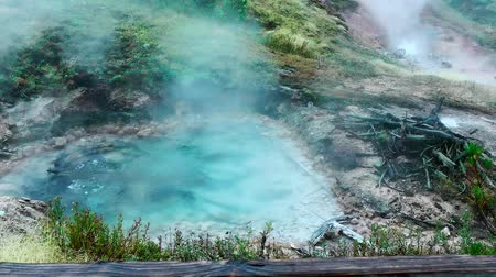 geologia : Seamless loop - Beautiful, geothermal hot springs bubbling and boiling in colorful turquoise pool with steam. Geyser spouting in distance. Yellowstone National Park, Wyoming, USA.