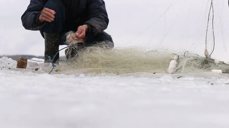 szczupak : Fishermen pull fish out of the hole in a frozen pond. Winter fishing