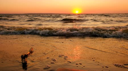 alkony : Coast Of The Sea At Dawn. Waves Wash The Sand.