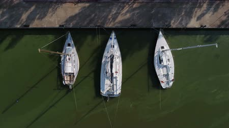 Pier with boats, marina lot. Aerial top view from drone. Green water due to seaweed Stok Video