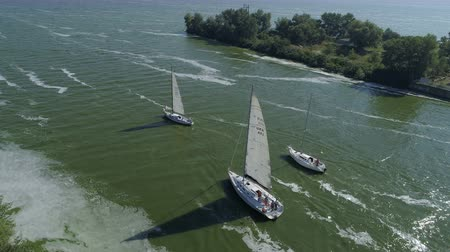 Yachts sail to the sea. Regatta. Races of sailing sports courts.