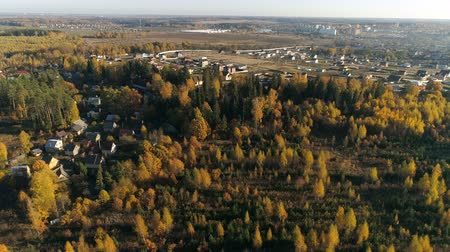 finlandiya : Aerial view of autumn forest. Fall landscape with red, yellow and green trees. Drone video 4k