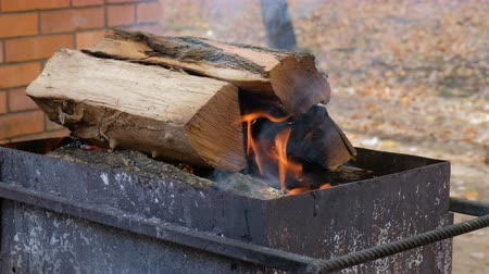 костра : Fire Logs Burning In A Brazier
