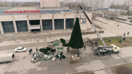 Aerial 4k footages of christmas tree. On The Square Of The City Stok Video