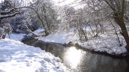 přirozeně : small creek flows through white winter landscape Dostupné videozáznamy