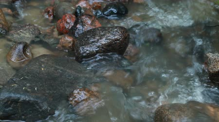 düzgün : Small forest stream flowing over colorful wet rocks Stok Video