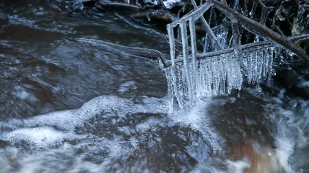 Fast water run in the spring stream, icicles are hanging on branches