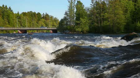 fince : Landscape of Kymi river in Finland, fast water motion and cars go over the bridge Stok Video