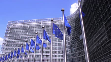 unie : European Flags floating in front of the European Commission in Brussels. Dostupné videozáznamy
