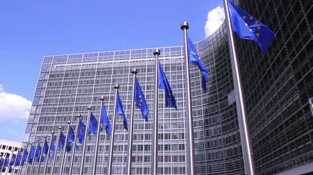 avrupa birliği : European Flags floating in front of the European Commission in Brussels. Stok Video