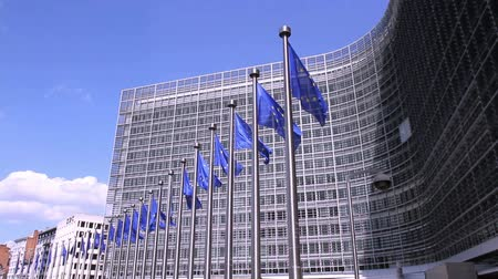 brüksel : European Flags floating in front of the European Commission in Brussels. Stok Video