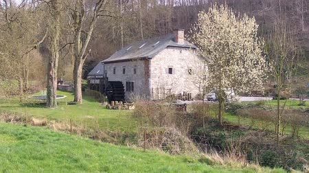 определенный : Old watermill in the Belgian countryside (Onoz). Стоковые видеозаписи