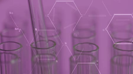 pipette : Close up of laboratory scientist working with a pipette analyzes and extract the DNA or molecules in the test tubes.on violet background with graphic interface