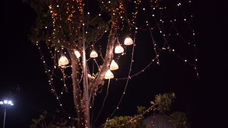 foglalat : background light bulbs outdoor on a wire against dusk forest, holiday concept