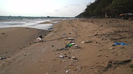 carrion : Ocean sandy beach heaped with garbage. Ecological concept. Ecological catastrophy
