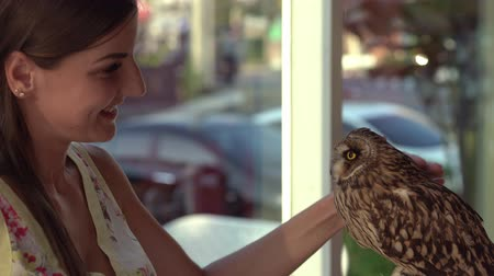 female strokes an owl in a cafe and rejoices.