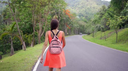 ormanda yaşayan : Beautiful Rain forest with a young woman traveler on the road into the forest Thailand. Female walks on a rainforest road and enjoys the views of nature. Stok Video