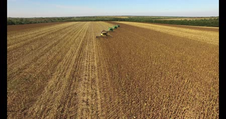 colheita : Combines harvest sunflower day aerial Vídeos