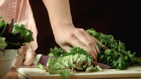 food preparation : The woman cuts cilantro and puts in a bowl