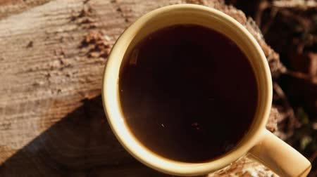 black coffee : A cup of tea on a stump in the forest Stock Footage